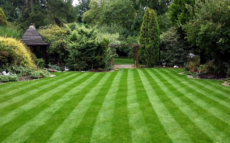Complaints about Summer Lawns Must Be Investigated